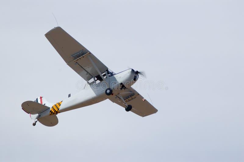 Cessna z ptakiem pies obrazy royalty free