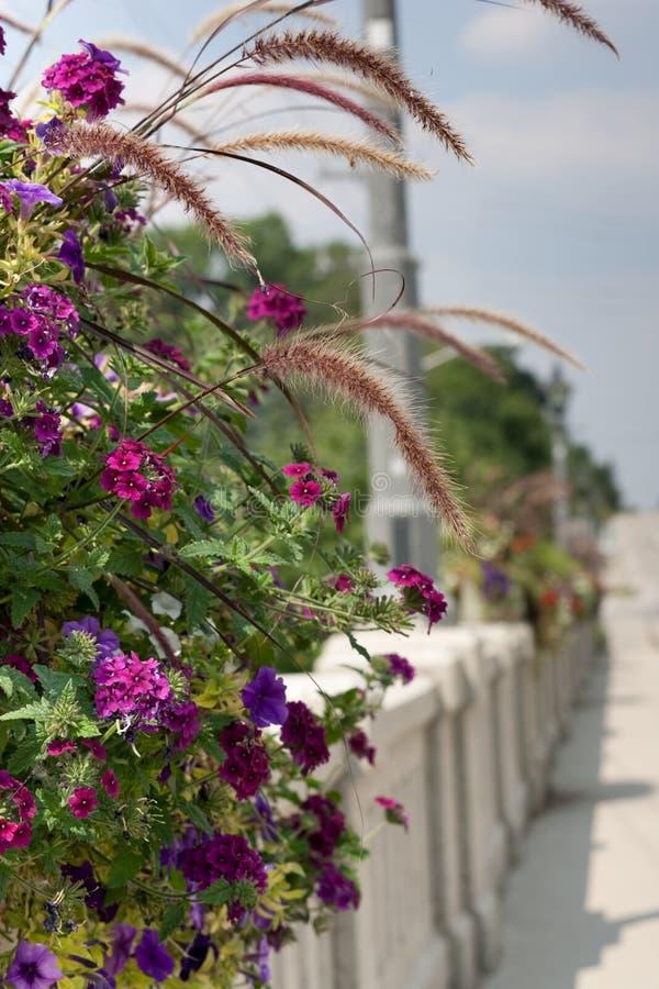 Cesta colorida da flor na ponte foto de stock
