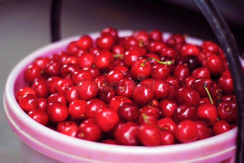 Cesta com as cerejas maduras vermelhas fotos de stock royalty free