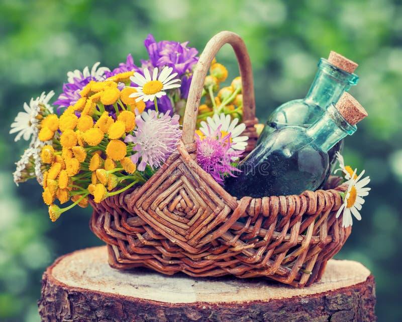 Cesta com ervas curas e garrafas da tintura imagens de stock
