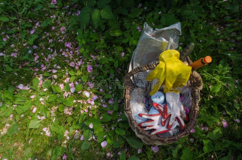 A cesta com ferramentas e luvas de jardinagem está na grama, que dispersou as pétalas cor-de-rosa Vista superior no instrumento h fotografia de stock royalty free