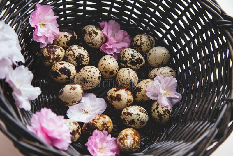 Cesta com ovos e flores foto de stock