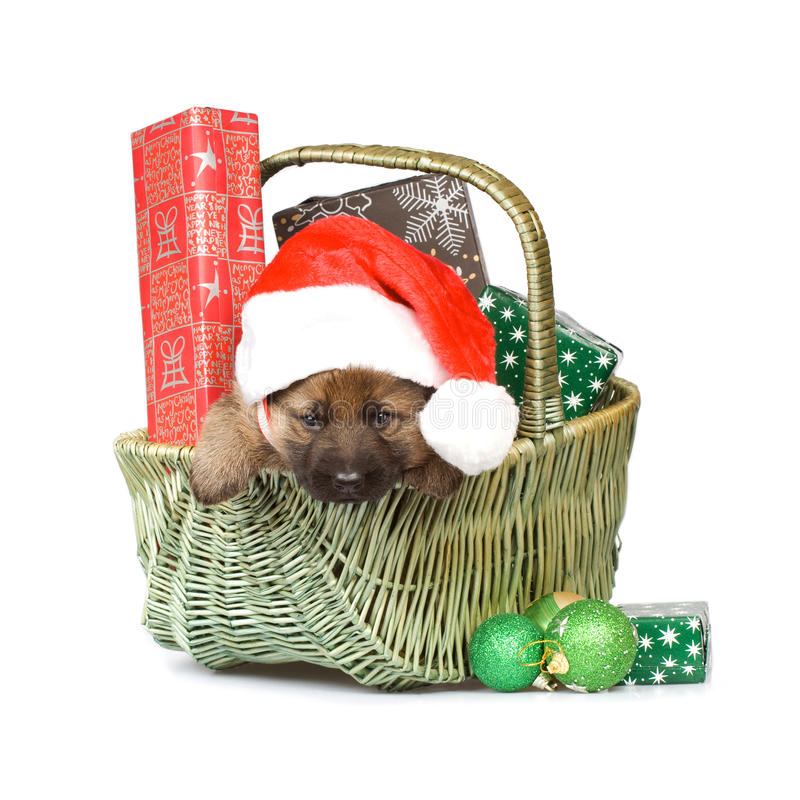 Cesta com presentes do Natal imagem de stock