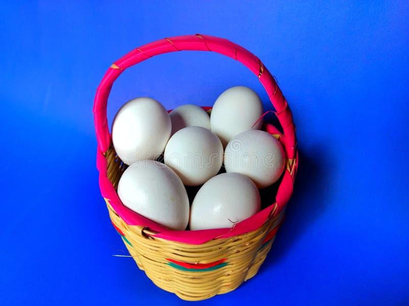 Cesta completamente de ovos orgânicos no dia do piquenique com fundo azul fotografia de stock