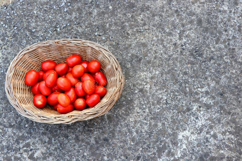 Cesta completamente de tomates frescos, vermelhos no concreto Fundo das frutas e verdura imagem de stock royalty free