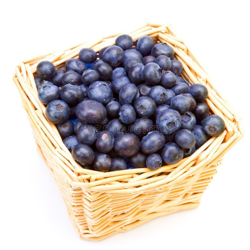 A cesta completamente de uma uva-do-monte madura foto de stock royalty free