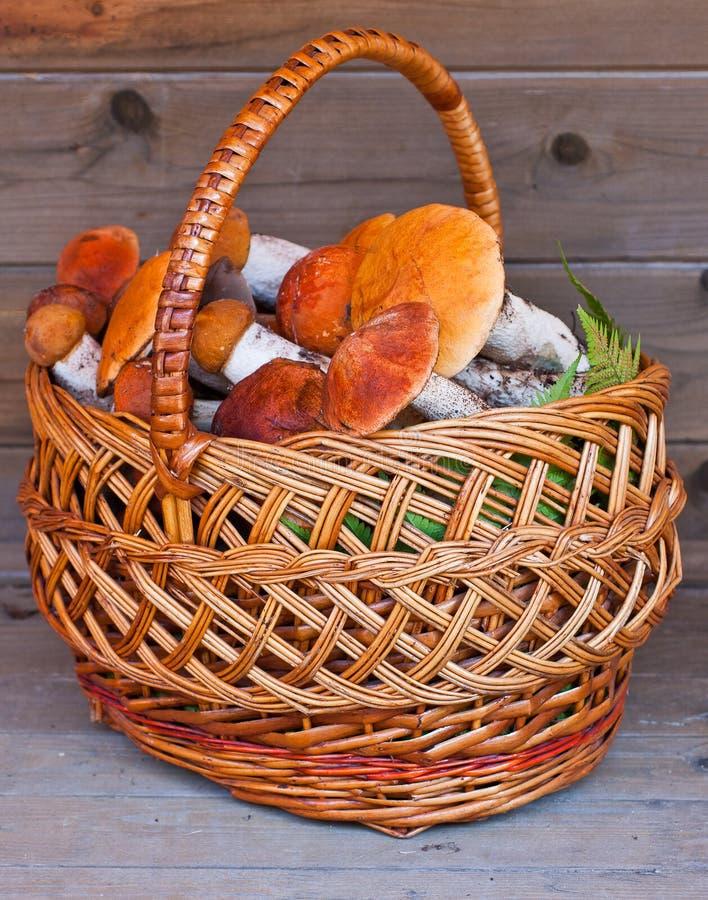 Cesta completamente dos cogumelos em um fundo de madeira imagem de stock royalty free
