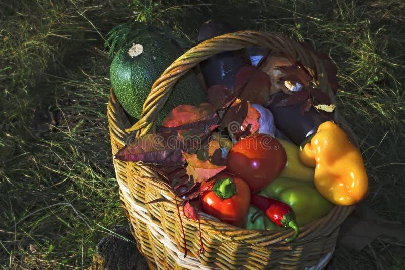 Cesta con el fondo de las verduras frescas de la naturaleza fotos de archivo libres de regalías