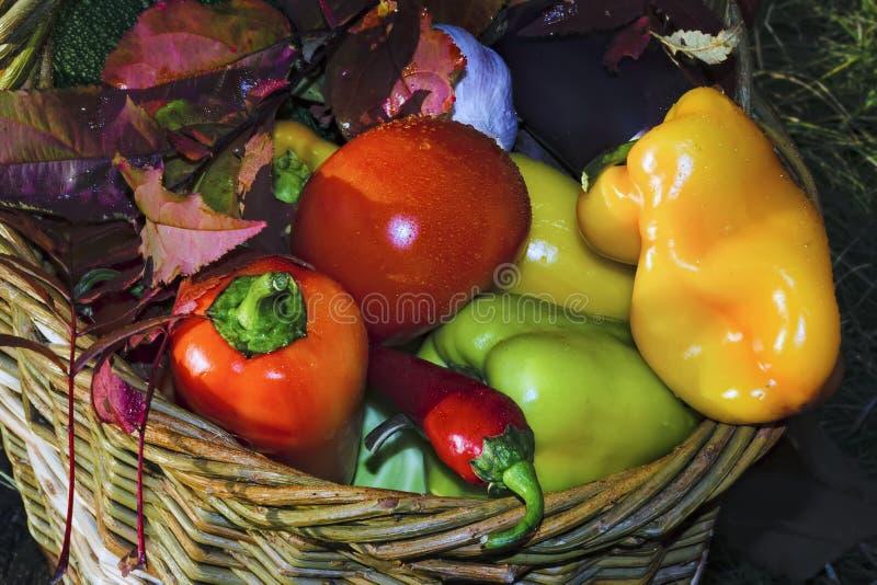 Cesta con el fondo de las verduras frescas de la naturaleza imagen de archivo