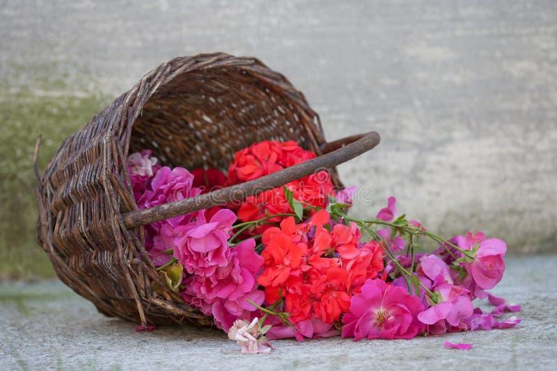 Cesta con las floraciones fotografía de archivo libre de regalías