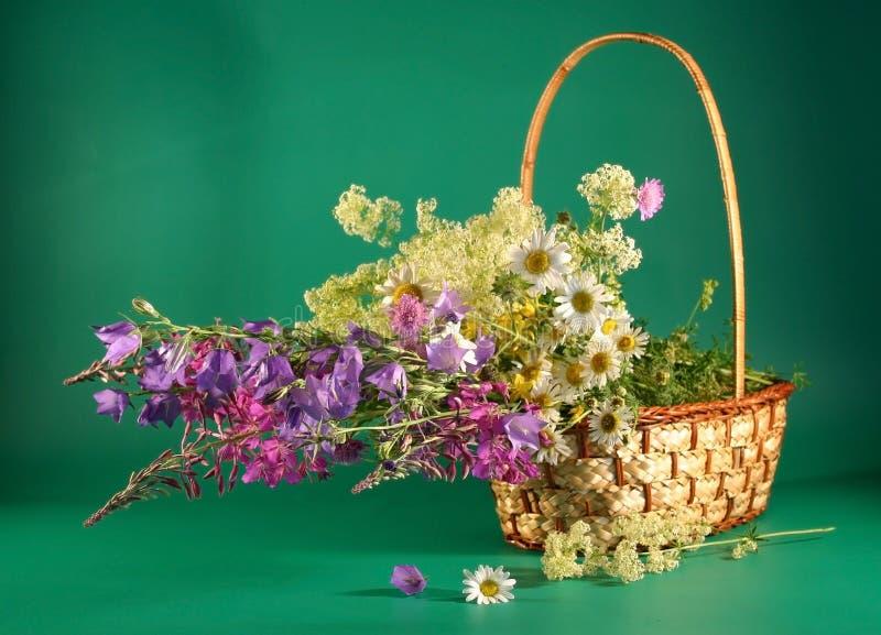 Cesta con las flores del campo. imagen de archivo
