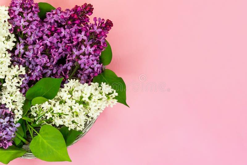 Cesta con las ramas de la lila blanca y púrpura en un fondo rosado con el lugar vacío para el texto imagen de archivo