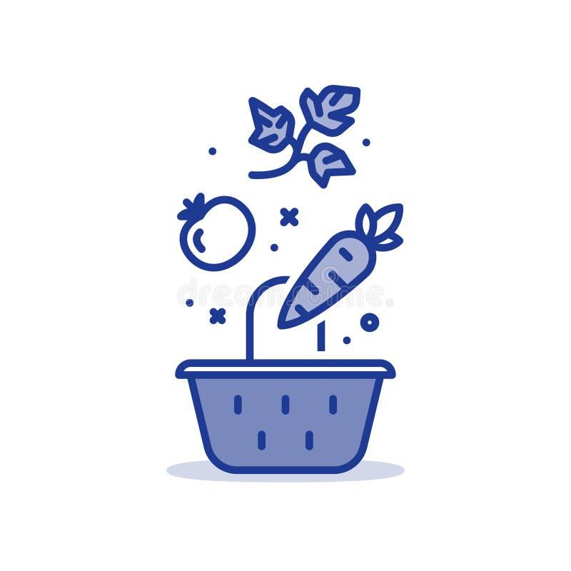 Cesta con las verduras frescas, comida del colmado, ejemplo del esquema libre illustration