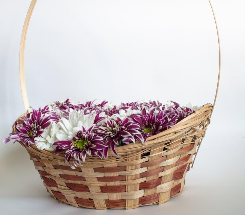 Download Cesta con los crisantemos imagen de archivo. Imagen de planta - 44851389