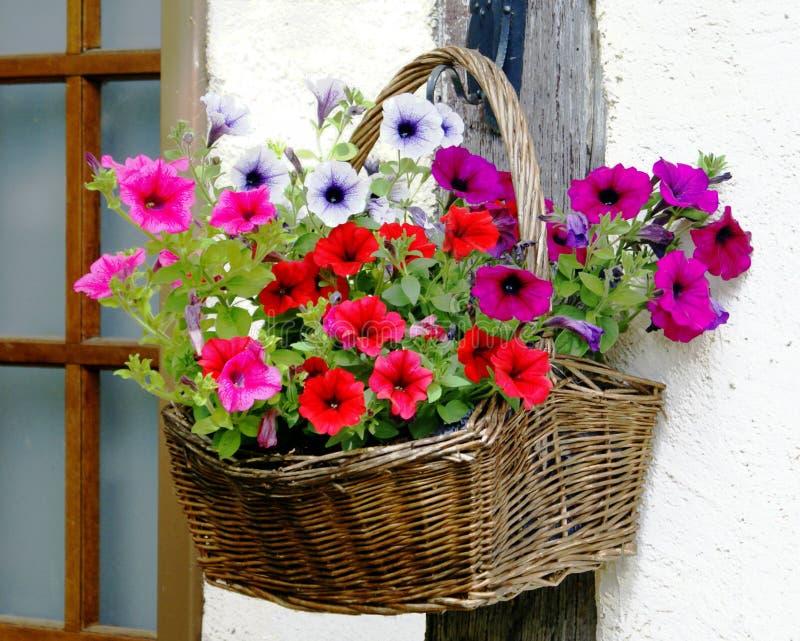 Cesta da flor imagens de stock