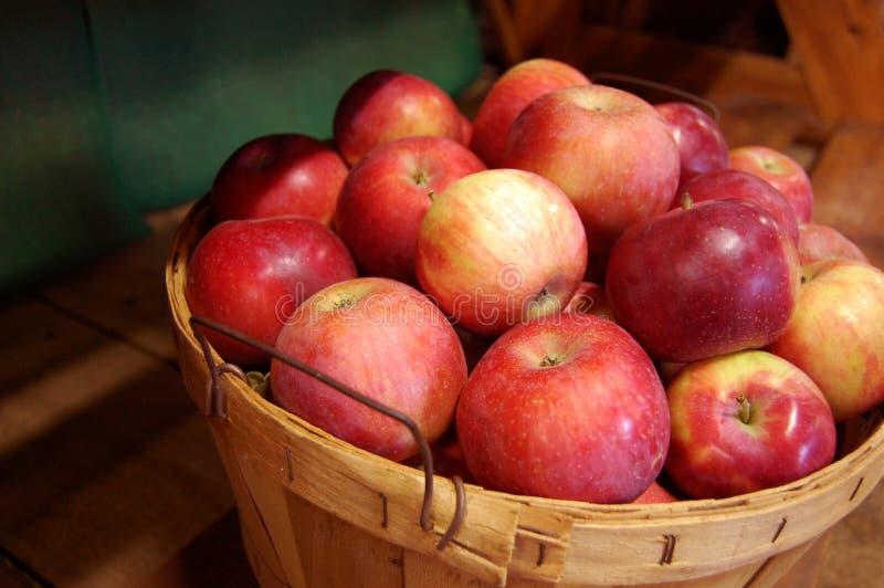 Cesta das maçãs foto de stock