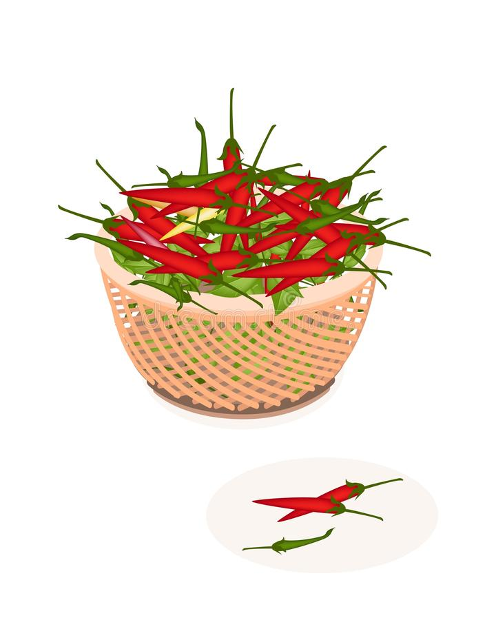 Cesta de Brown de Chili Peppers rojo y verde libre illustration