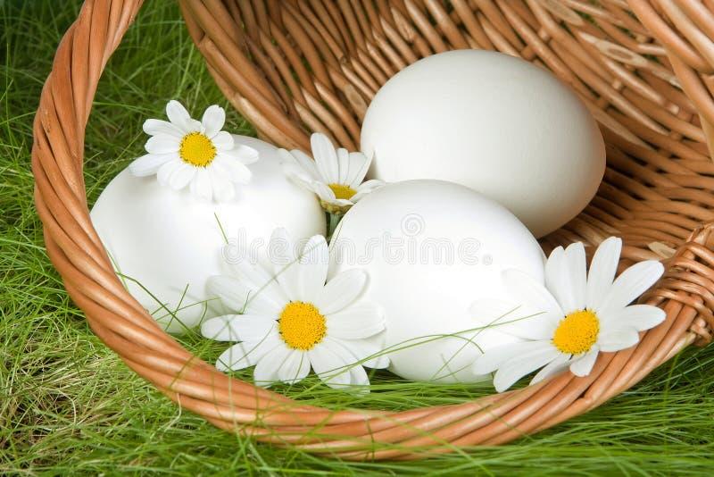 Cesta de Easter com ovos imagens de stock royalty free