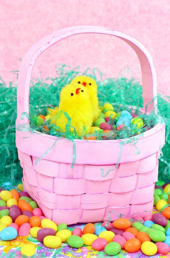 Cesta de Easter com pintainhos fotos de stock