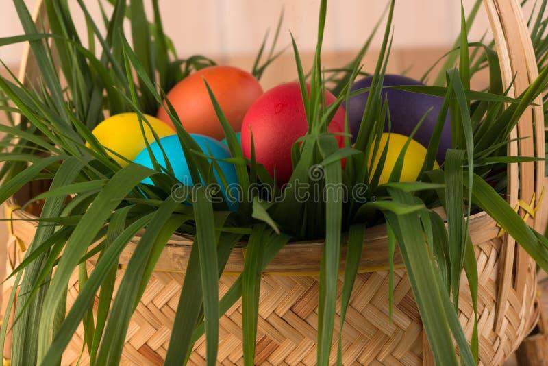 cesta de hierba de la primavera y de huevos de Pascua imagenes de archivo
