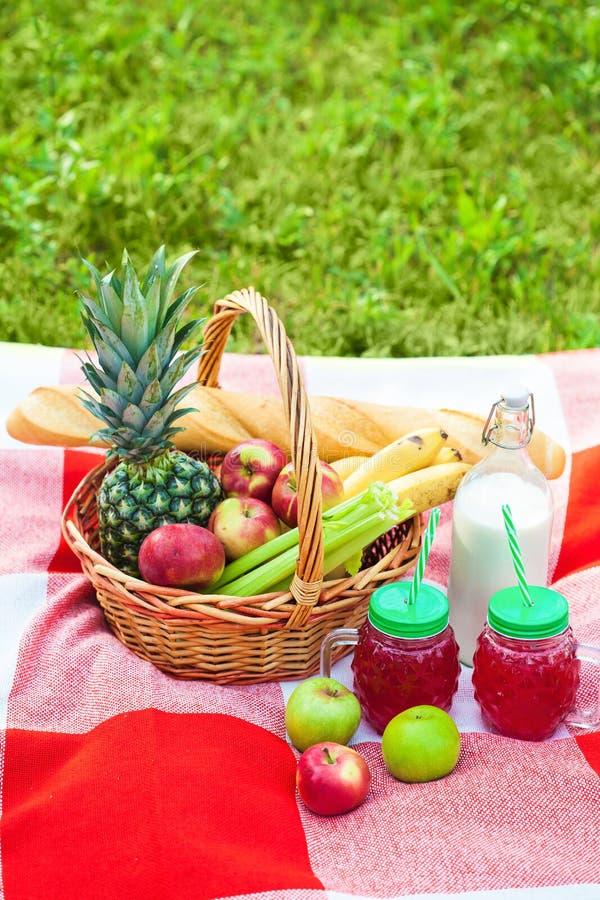Cesta de la comida campestre, fruta, jugo en las pequeñas botellas, manzanas, verano de la piña, resto, tela escocesa, espacio de fotografía de archivo libre de regalías