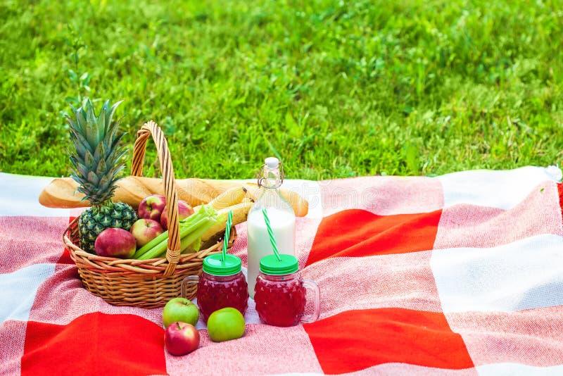 Cesta de la comida campestre, fruta, jugo en las pequeñas botellas, manzanas, verano de la piña, resto, tela escocesa, espacio de fotografía de archivo