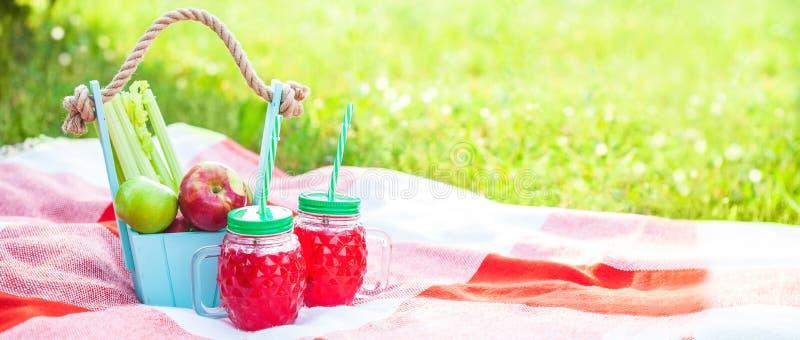Cesta de la comida campestre, fruta, jugo en las pequeñas botellas, manzanas, verano, resto, tela escocesa, concepto de la bander imágenes de archivo libres de regalías