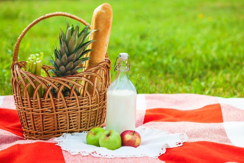 Cesta de la comida campestre, fruta, leche, manzanas, verano de la piña, resto, tela escocesa, espacio de la copia de la hierba foto de archivo