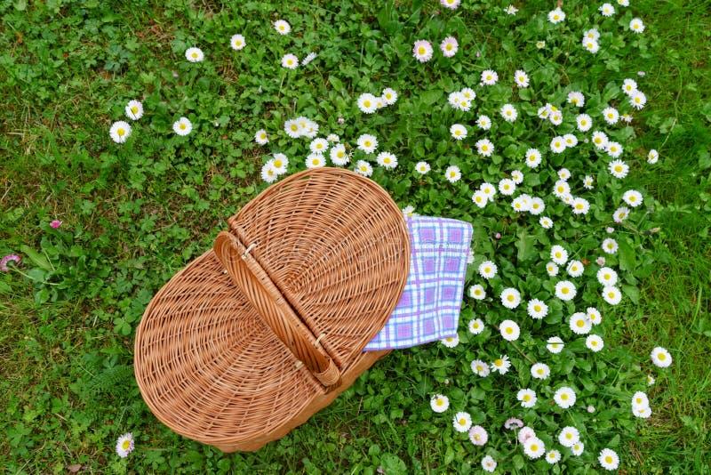 Cesta de la comida campestre y servilleta a cuadros blanca azul en césped con la margarita foto de archivo