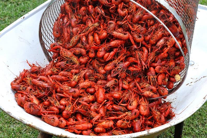 Cesta de lagostins fervidos quentes fotografia de stock royalty free