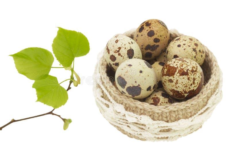 Cesta de lino del cordón del ganchillo con los huevos de Pascua aislados en el fondo blanco Rama de árbol de tilo de la primavera imagen de archivo