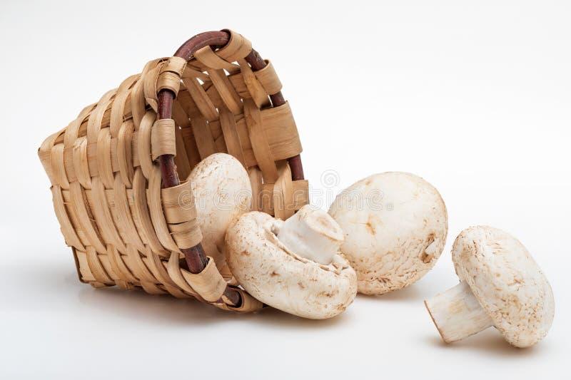 Cesta de mimbre con el champiñón de las setas, cortado pies, crudo crudo bísporo del Agaricus foreground imágenes de archivo libres de regalías