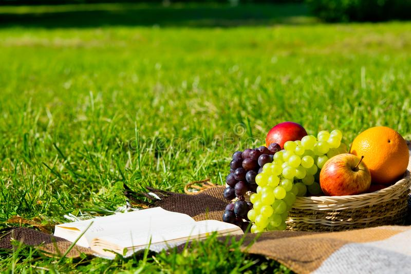 Cesta de mimbre con las diversas frutas en una comida campestre al lado de un libro, en una tela escocesa imagen de archivo libre de regalías