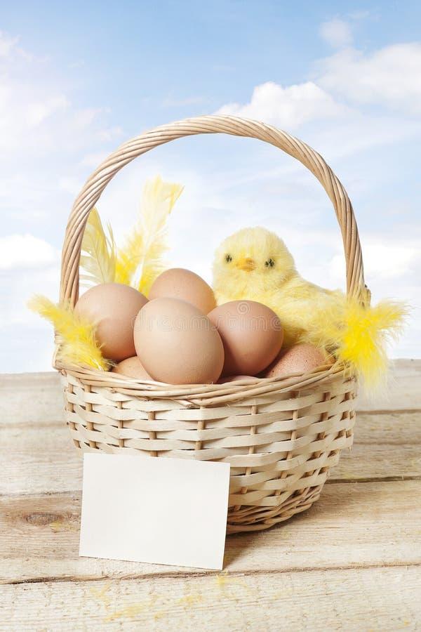 Cesta de Pascua con el pollo y los huevos del bebé fotos de archivo