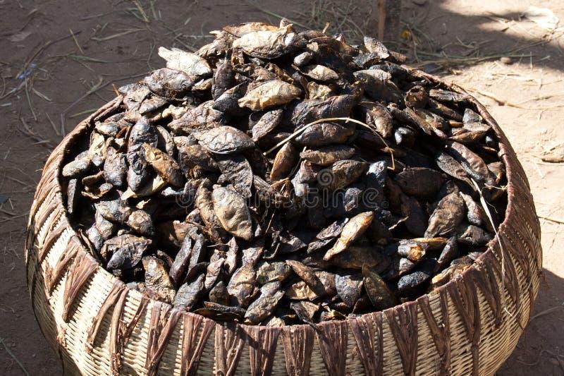 Cesta de peixes secados. imagens de stock