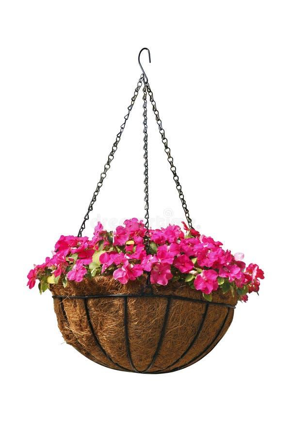Cesta de suspensão de flores bonitas fotografia de stock