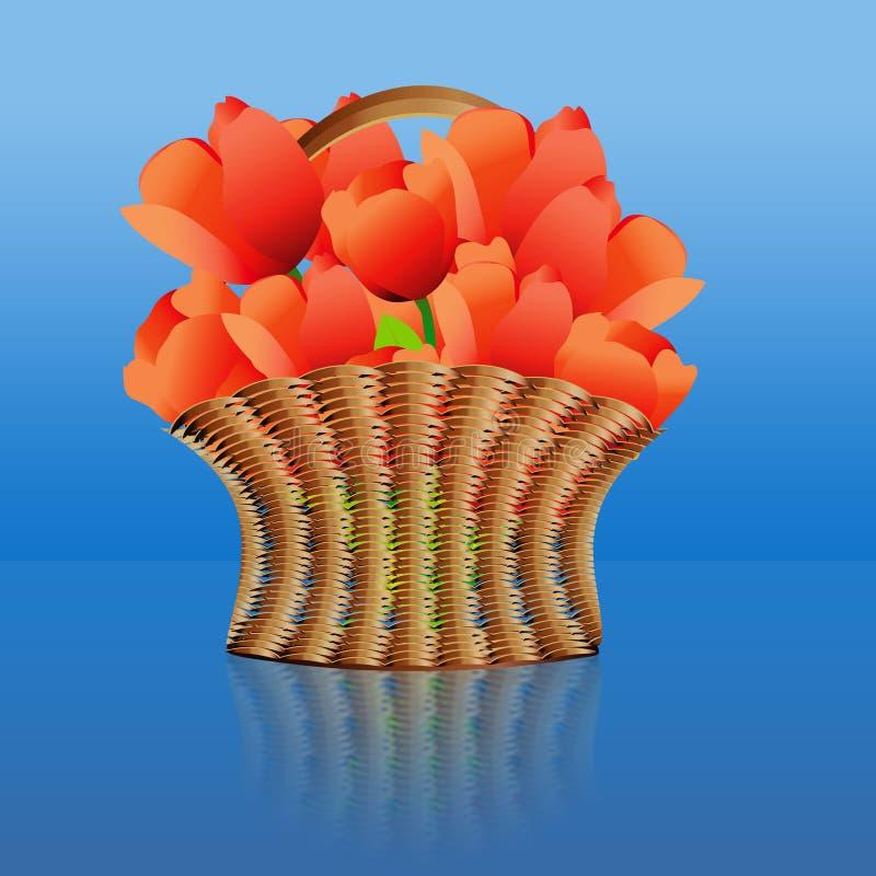 Cesta de tulipas vermelhas ilustração do vetor
