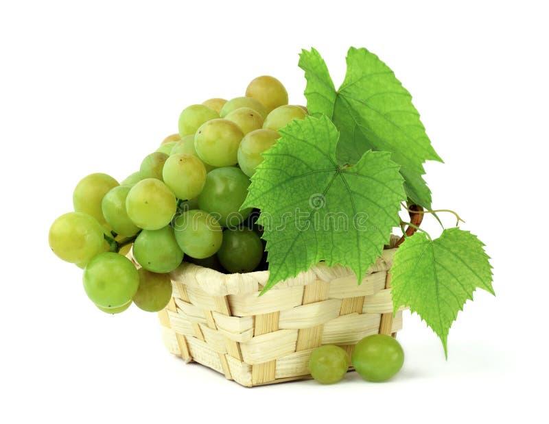 Cesta de uvas fragantes aisladas en blanco Manojos de gra maduro fotos de archivo libres de regalías