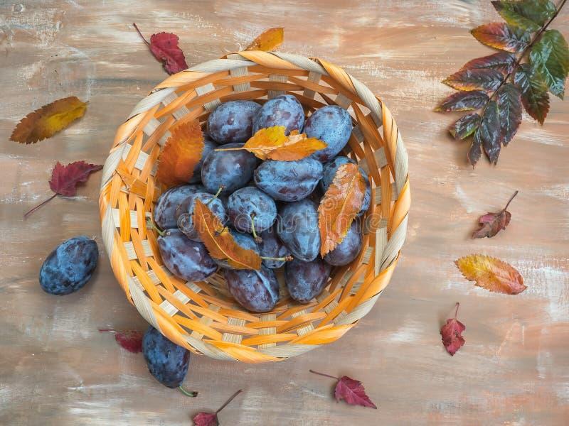 Cesta de vime com ameixas e as folhas de outono maduras em um fundo de madeira marrom imagem de stock