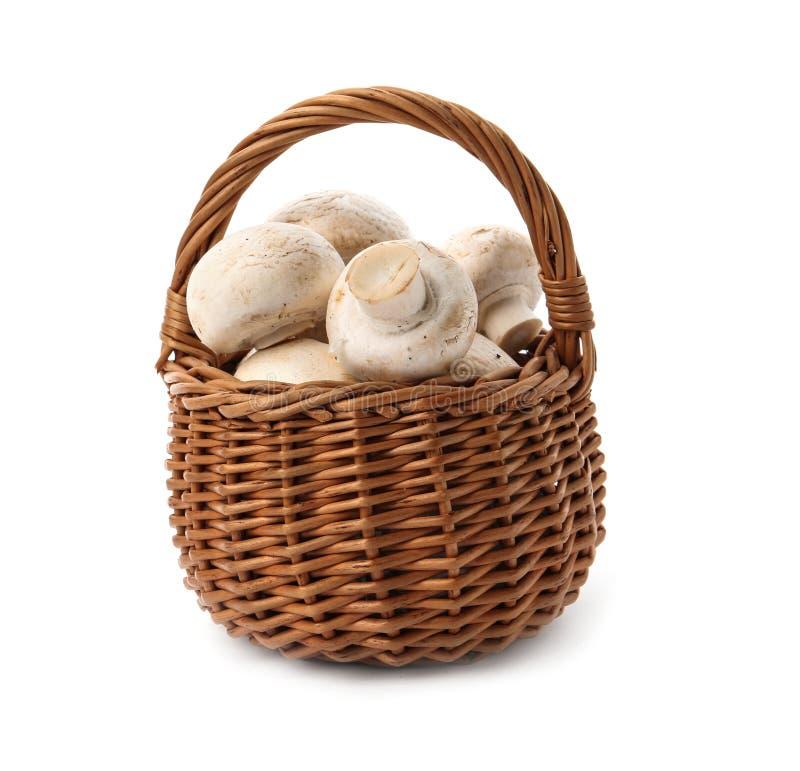 Cesta de vime com os cogumelos crus frescos do cogumelo foto de stock royalty free