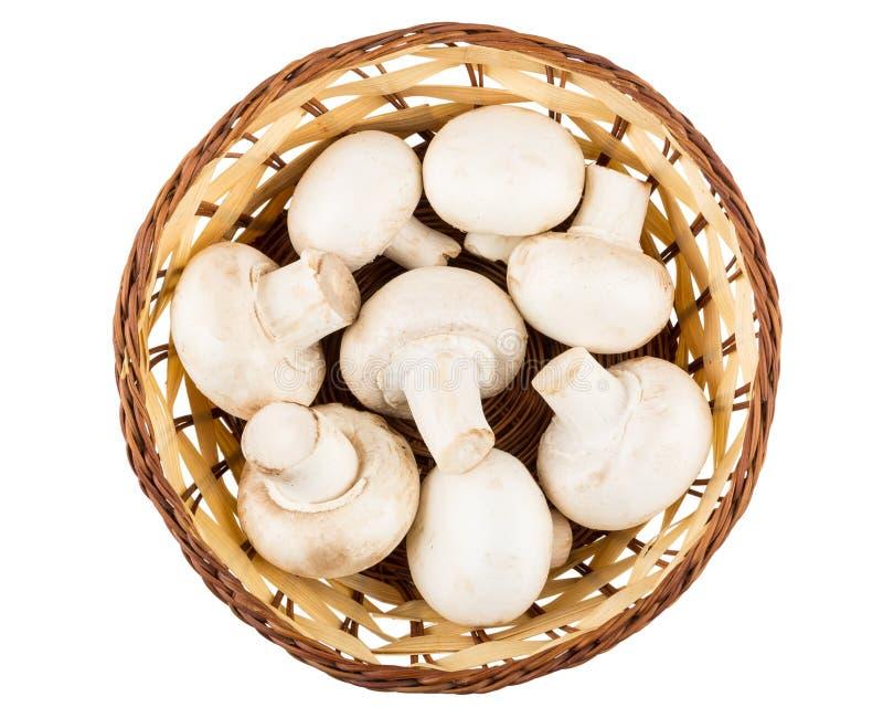 Cesta de vime com os cogumelos crus isolados no branco fotografia de stock royalty free