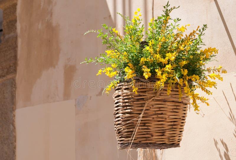 Cesta de vime de Flowerd foto de stock