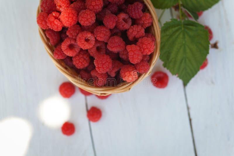 Cesta de vime pequena com as framboesas maduras frescas fotografia de stock royalty free
