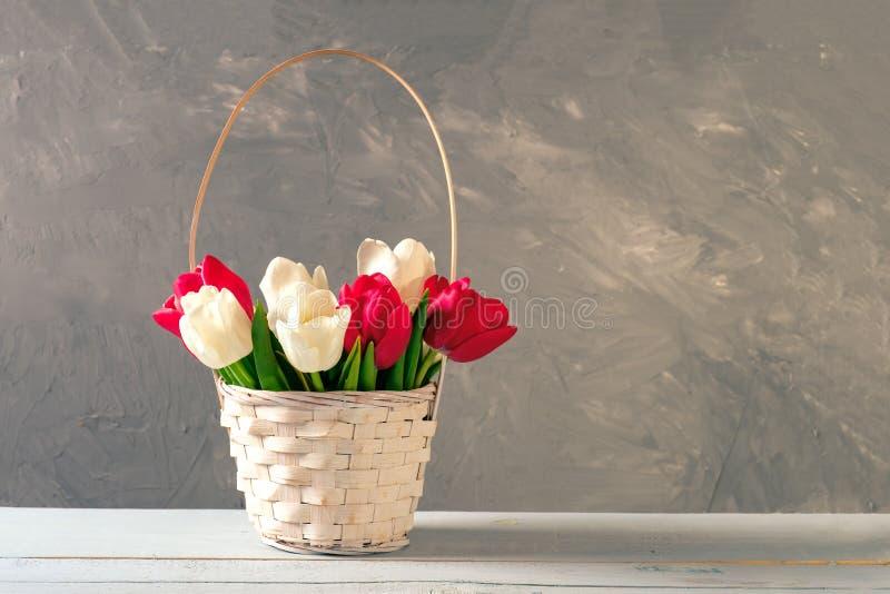 Cesta de vime de suportes de florescência frescos das tulipas na tabela de madeira Modelo da bandeira com copyspace para a mulher fotos de stock royalty free