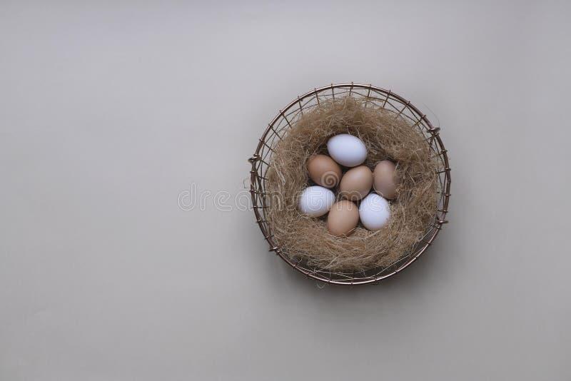 Cesta de Wirey com a palha completa dos ovos brancos e amarelos da galinha em um fundo cinzento fotos de stock