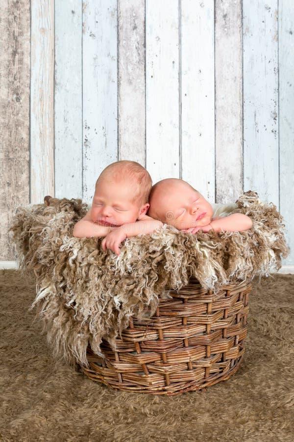 Cesta del vintage con los bebés gemelos fotografía de archivo