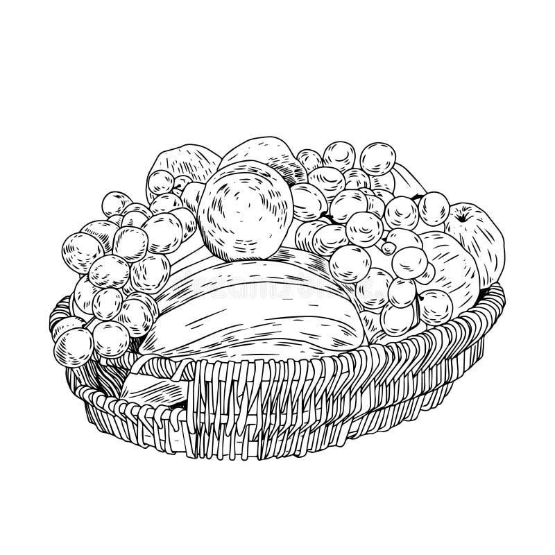 Cesta dibujada mano con las frutas Grabe el ejemplo de la tinta Uva y plátanos libre illustration