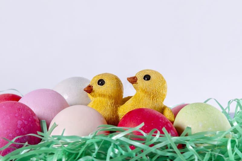 Cesta do ovo da páscoa, pintainhos foto de stock royalty free