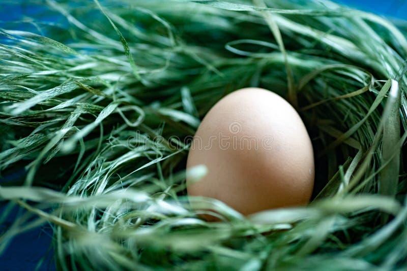 Cesta dos ovos da galinha no hey imagem de stock royalty free