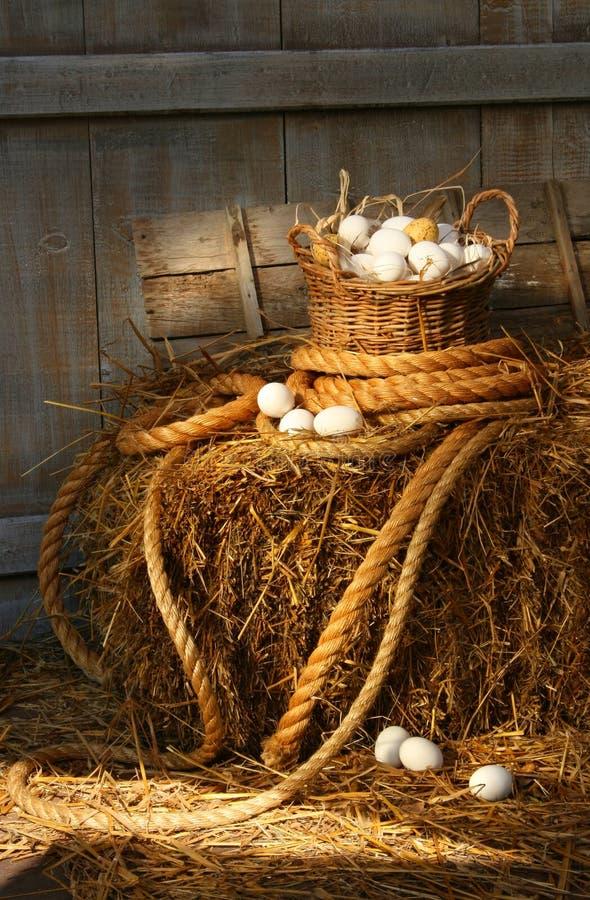 Cesta dos ovos em uma bala do feno fotografia de stock